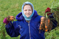 Child holding carrots. Royalty Free Stock Photo