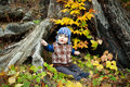 Child in knitted sweater sits autumn park Royalty Free Stock Image