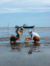 Child labor on vietnam beach mekong delta july unidentified children women working when tide going out people rake black sand to Stock Photos