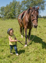 Child leading a horse young girl in field start em young Royalty Free Stock Images