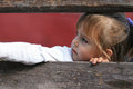 Child looking through wooden fence Royalty Free Stock Photo