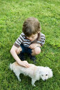Child petting poodle Stock Photos