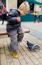Child and pigeons Royalty Free Stock Image
