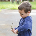 Child playing with twigs boy in park or garden Stock Photography
