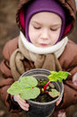 Child with rhubarb little girl holding pot Stock Image