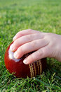 Child's hand on a cricket ball Royalty Free Stock Photo