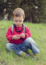 Child sitting in grass boy nature exploring small daisy flower Stock Images