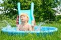 Child Sliding into Pool