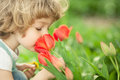 Child smelling tulip Stock Images