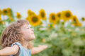 Child in spring field Royalty Free Stock Photo