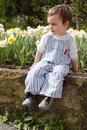 Child in spring flower garden toddler sitting on a wall next to bed with daffodils Royalty Free Stock Image