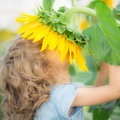 Child in spring happy smelling beautiful sunflower outdoors field Stock Images