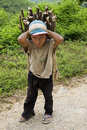 Child transports firewood, Laos Stock Photos
