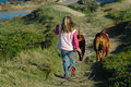 Child walking dogs Stock Photo