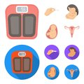 Child in the womb, scales, test. Pregnancy set collection icons in cartoon,flat style vector symbol stock illustration Royalty Free Stock Photo