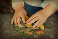Childhood nostalgia child hands playing with leaves and petals Stock Images
