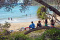 Children at beach in noosa national park queensla australia july sitting on a tree branch watching the swimers a surfing the Stock Image