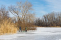 Children in the city use hilly bank of the frozen river Dnepr for to go in for sledging Royalty Free Stock Photo