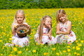 Children on Easter egg hunt with eggs Royalty Free Stock Photography