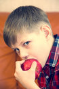 Children eating juicy red apple Royalty Free Stock Images