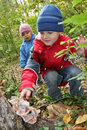Children explore shelf fungus Stock Image