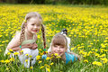 Children in field with flower. Royalty Free Stock Photography