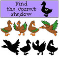 Children games: Find the correct shadow. Ducks. Royalty Free Stock Photo