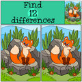 Children games: Find differences. Little cute baby fox looks at the fly.