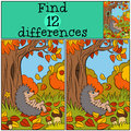 Children games: Find differences. Little cute hedgehog. Royalty Free Stock Photo