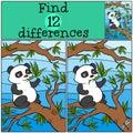 Children games: Find differences. Little cute panda.