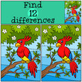 Children games: Find differences. Little cute parrot. Royalty Free Stock Photo