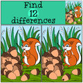 Children games: Find differences. Little cute squirrel. Royalty Free Stock Photo
