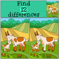 Children games: Find differences. Mother goat with her baby. Royalty Free Stock Photo