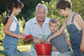 Children is helping her grandfather in the garden teaches to plant plants Royalty Free Stock Images
