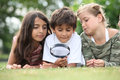 Children looking at insects through a magnifying glass Royalty Free Stock Photo