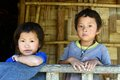 Children of the nishi tribes at arunachal pradesh in india Stock Image