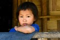 Children of the nishi tribes a girl portrait at arunachal pradesh in india Royalty Free Stock Images