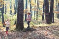 Children play in autumn forest. Brother and sister have fun on fresh air. Little boy and girl friends camping in woods Royalty Free Stock Photo