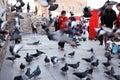 Children play among the pigeons next to Yeni Camii (New Mosque), Eminonu, Istanbul, Turkey. Royalty Free Stock Photo