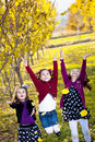 Children playing in the fall leaves Stock Photos