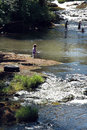 Children playing in a river play wood shaded on hot summer s day Royalty Free Stock Photo