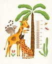 Children`s height wall chart in centimeters decorated with tropical palm tree, jungle plants and funny cartoon exotic