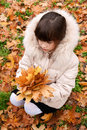 Children s portrait of a young girl on the background of autumn leaves Stock Image