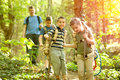 Children scouts and father explore the beautiful forest Royalty Free Stock Photo