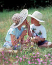 Children sharing flowers Stock Images