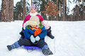 Children on sleds in snow cute sister and brother forest Royalty Free Stock Photos