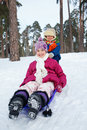 Children on sleds in snow cute sister and brother forest focus the boy Stock Photos
