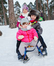 Children on sleds in snow cute three kids forest focus the boy Royalty Free Stock Photo