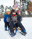Children on sleds in snow cute three kids forest focus the boy Stock Photography