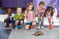 Children with turtle as pet many interracial in a kindergarten Royalty Free Stock Photo